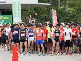 第9回大泉緑地ふれあいマラソン大会ボランティアスタッフ募集