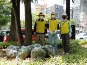 天王寺区の緑を守ろう!~街路樹や公園樹をササから守る活動に参加しませんか~