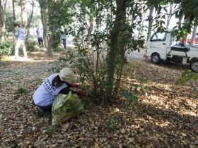 3/13(土)「緑化ボランティア」で大阪城公園の美しい景観を守ろう