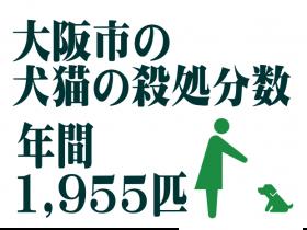 大阪市の犬猫の殺処分数 年間1,955匹